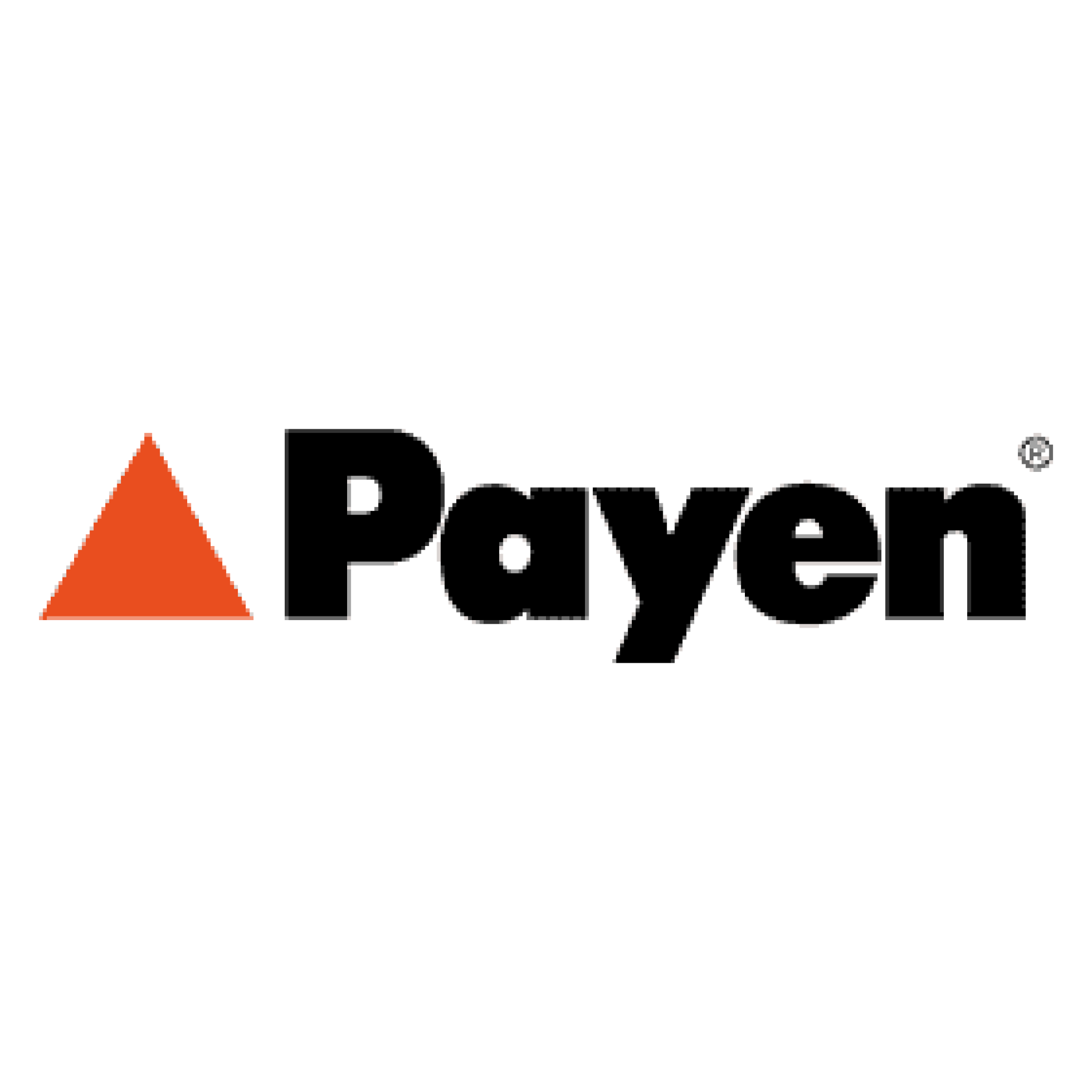 payen-by-federal-mogul-motorparts-vector-logo-small.png