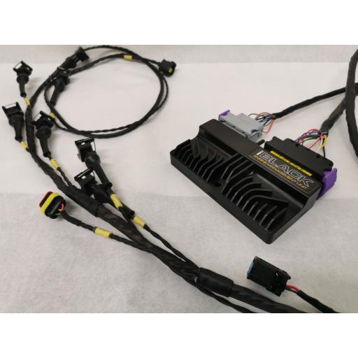 Ford Fiesta ST150 / Ecu-Master Black wiring loom / Ecu package
